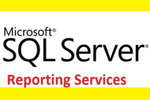 Portfolio for Microsoft SSRS Report Developer