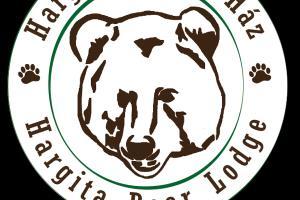 Portfolio for Logo, Banner