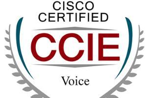 Portfolio for CCIE Voice Engineer