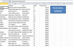 Portfolio for VBA Programmer/Excel Expert/Data Entry