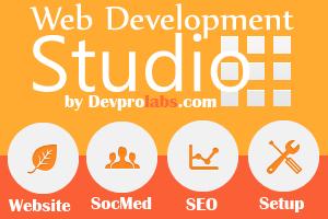 Portfolio for Built Online Shop with WP+Woocommerce