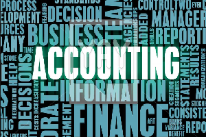 Portfolio for Bookkeeping and Financial Statements