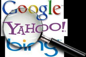 Portfolio for Web Search