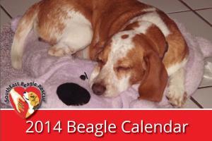 Portfolio for Calendars