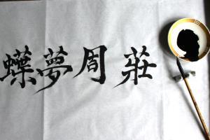 Portfolio for Chinese Translation Service