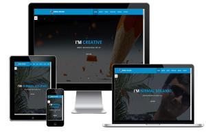 Portfolio for Responsive Web Design/Development