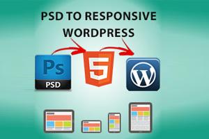 Portfolio for Psd to wordpress expert