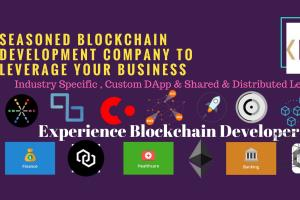 Portfolio for ICO | Blockchain Developer | Ethereum |