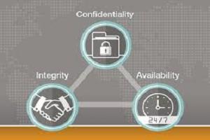 Portfolio for Sr Information Security Consultant