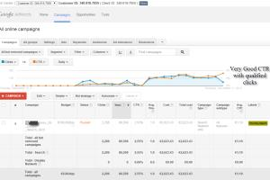Managing PPC campaign for forex
