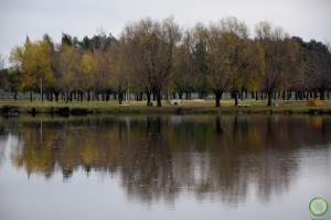 Portfolio for Landscape edition