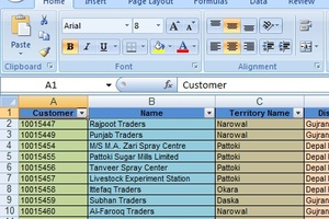 Portfolio for Microsoft Excel | Data Formatting