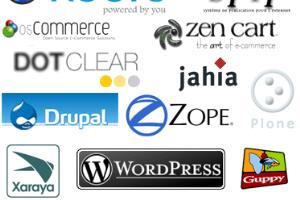 Portfolio for CMS - Content Management Systems