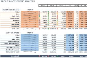 Portfolio for Financial Analysis, Book Keeping,