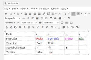 Portfolio for MS Word Editor in WordPress