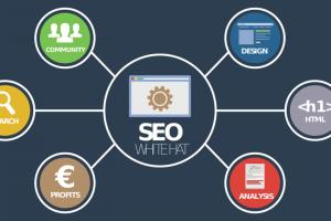 Portfolio for SEO Marketing