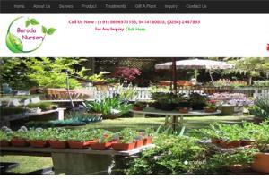 Portfolio for Web Designing and Web Development