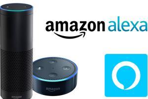 Portfolio for Alexa Development