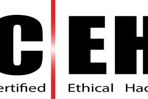 Portfolio for Ethical Hacking , Security analysis