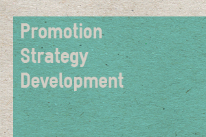 Portfolio for Promotion Strategy Development