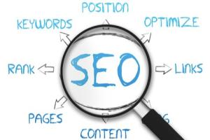 Portfolio for Result Oriented SEO Services