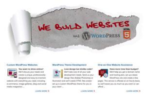 Portfolio for WordPress Website Maintenance and More