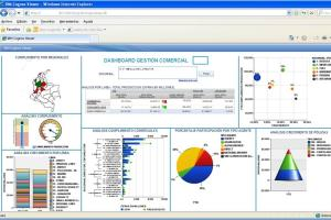 Portfolio for Business Intelligence Cognos and Others