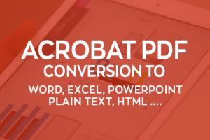 Portfolio for PDF to Excel, PDF to Word Conversion