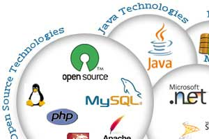 Portfolio for Application Development: Java J2EE