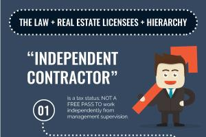 Infographic - Real Estate Licenses