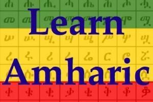 Portfolio for Amharic-English-Amharic Translator