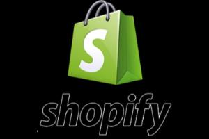 Portfolio for Shopify Product Research And Uploading