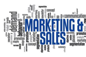Portfolio for Sales and Marketing expert/Business Plan