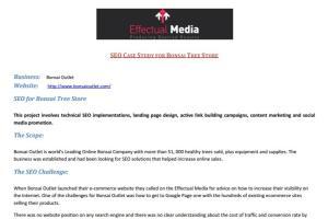 Portfolio for IT Services WEB|Search|Design|Mobile