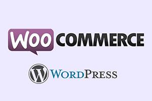 Portfolio for Wordpress wocommerce