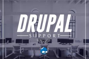Portfolio for Provide support in any Drupal project