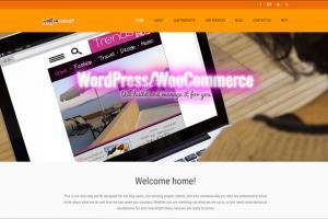 Portfolio for WordPress / WooCommerce Support