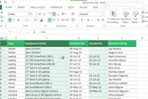 Portfolio for data-entry professional