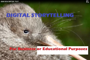 Portfolio for Create Digital Storytelling for Business