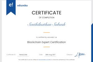 Portfolio for Blockchain/Ethereum/ICO Expert