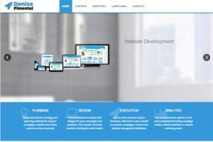 Portfolio for Wordpress Web Design and Development