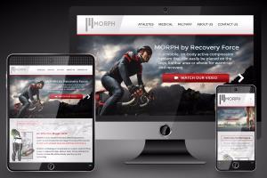 Portfolio for WordPress, Joomla and Ecommerce Expert