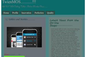 Portfolio for Experienced web developer