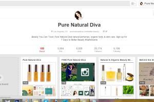 Portfolio for Pinterest Expert , Social Media Expert