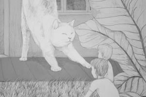 Portfolio for Hand drawing illustrations, art