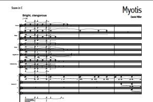 Portfolio for Music Copyist
