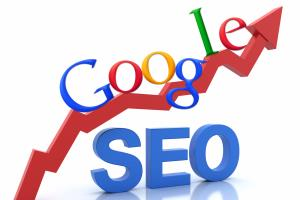 Portfolio for Search Engine Optimization (SEO)