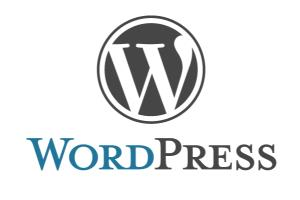 Portfolio for WordPress Theme installation