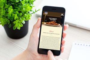 Portfolio for Responsive WordPress Website Development