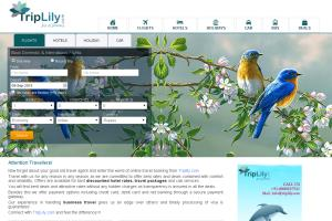 Portfolio for Travel Portal Development India